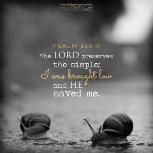 Псалом 116