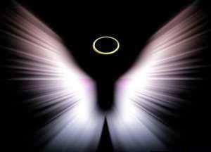 бабочка ангел